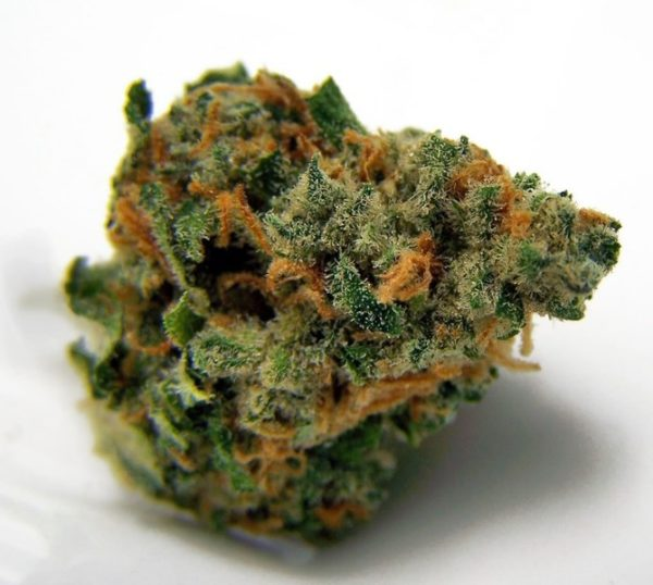 buy Blue Dream Strain