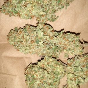buy Holy Grail OG Strain