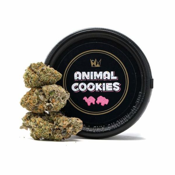 buy Animal Cookies strain