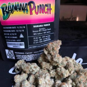 Banana Punch Marijuana weed