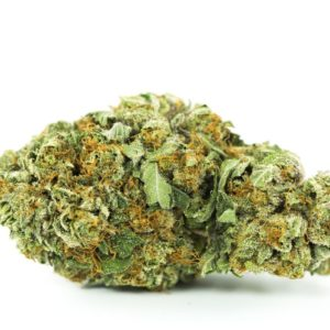 buy Black Tuna Strain | marijuana