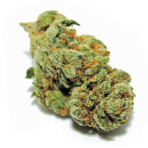 Buy Afghan OG Strain now