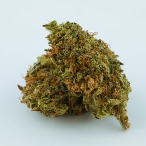 Buy Black Widow Weed strain
