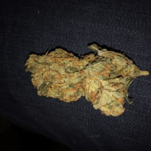 buy Amnesia Haze Strain | Cannabis