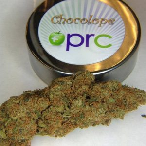 buy Chocolope Strain fast weed